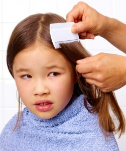 проверка ребенка на наличие вшей
