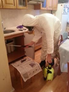 уничтожение домашних муравьев