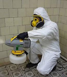 служба дезинфекции тараканов
